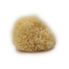 natural-baby-sponge