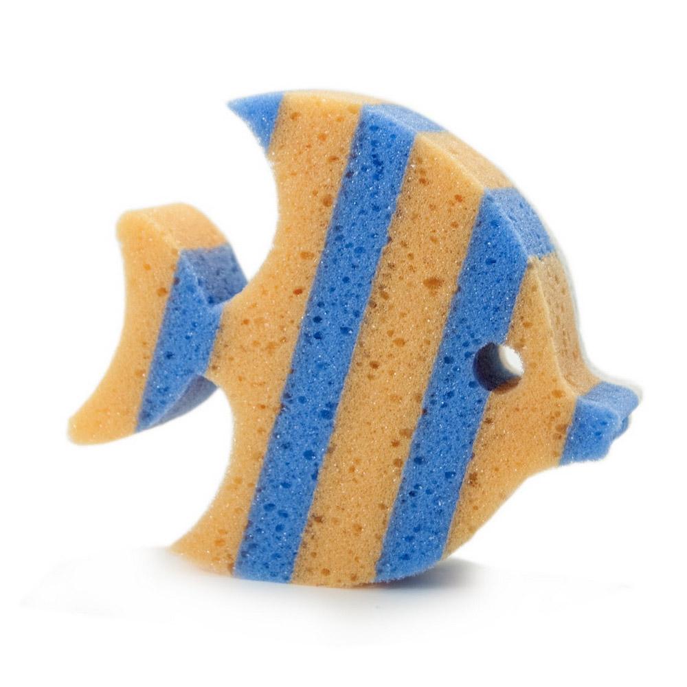 spugna-pesce