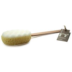 spazzola-rigenerante-spugna-e-massagio